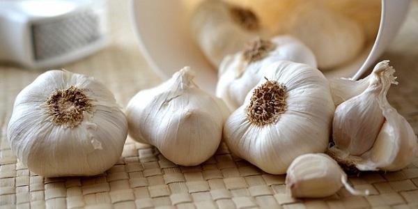 El ajo es un de antibiótico natural, considerado como el mejor y también es antibacteriano