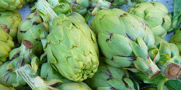 La alcachofa tiene un alto valor alimenticio y es muy alta en hierro por lo cual ayuda a combatir la anemia