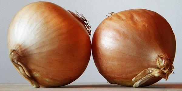 La cebolla es uno de los mejores antioxidantes naturales que se conocen