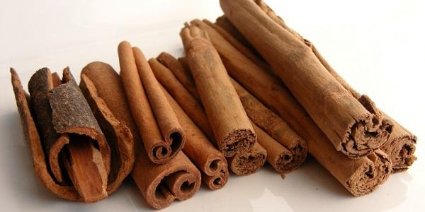 Entre las plantas medicinales esta la canela la canela que no solo sirve como especia, también en la medicina natural es de gran utilidad