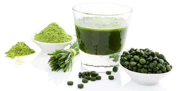 La Chlorella es una mini alga que contiene altos niveles de clorofila