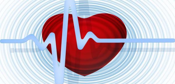 Plantas medicinales para el corazón - Las Plantas Medicinales