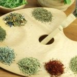 Plantas medicinales para los vómitos